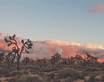 desert sunset photograph, Joshua Tree, desert decor, office decor, blue, pink, earth tones, Southwestern, California wall art, Coachella
