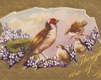 Birds postcard Happy New Year Vintage Postcard, embossed bird postcard, violets, My thoughts are of you
