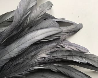 VOGUE Coque  Tail Feathers / Satin Pewter grey /  204