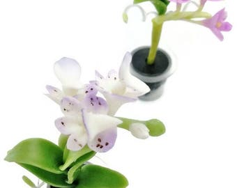 Orchids Miniature Polymer Clay Handmade Flowers for Dollhouse, set of 2 pieces