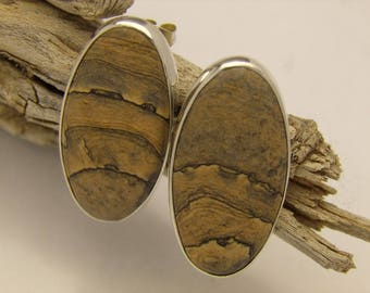 Picture Jasper oval earrings with posts