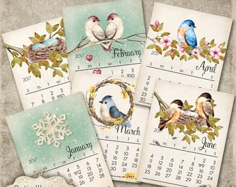 NEW - Printable 2017  Calendar - Whimsical Birds - Sized 8.5 x 11 Inches - INSTANT DOWNLOAD -5.00