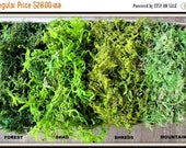 ON SALE: BULK Moss- 1 1/2  pounds of Real moss in 5 styles-Basket moss-Preserved Sphagnum Moss-Wedding Decor-Woodland moss