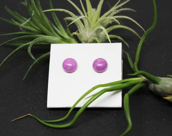 Phosphosiderite Gemstone . 8mm Round Dome . Sterling Silver Posts Studs Earrings . Rich Lilac Purple . E17009