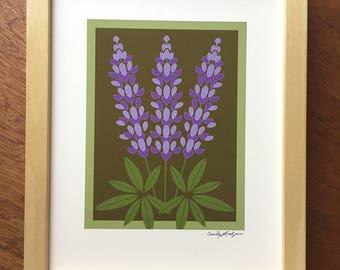 Purple Lupine print