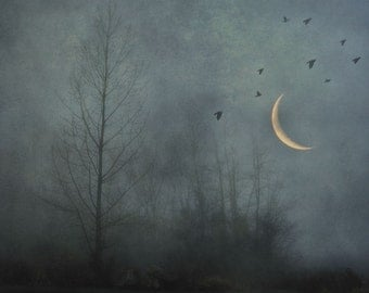 "Surreal landscape photography birds crescent moon forest woodland evening - ""Dark solitude"" 8 x 10"