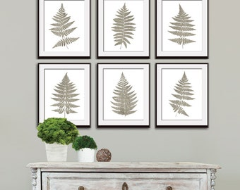 Fern Fantasy Impressions (Series B6) Set of 4 - Art Prints (Featured in Stone Wash) Nature Woodland Inspired