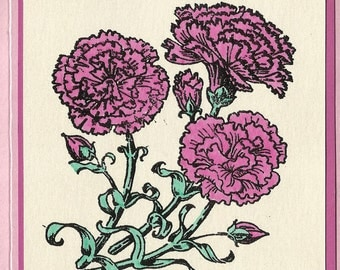 Flower of the Month-January's Carnations