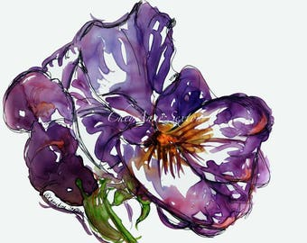 purple pansy watercolor giclee print 8x10