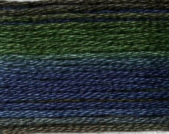 Cosmo, 6 Strand Cotton Floss, SE80-8025, Seasons Variegated Embroidery Thread, Dark Greens/Blues, Wool Applique, Cross Stitch, Embroidery
