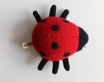 Ladybug Beetle