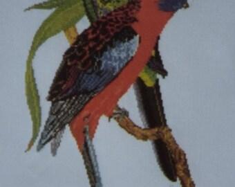Crimson Rosellas  - Designed by Graeme Ross