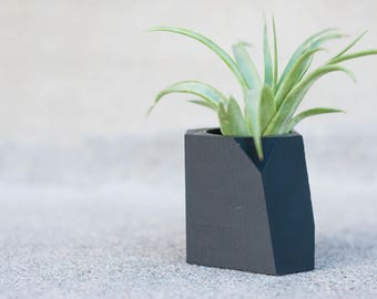 Black Lily - Air Plant/ Mini Succulent Planter