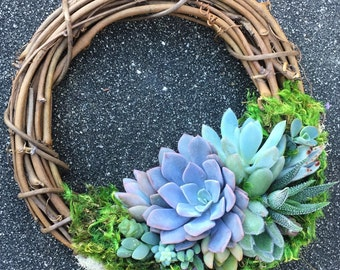 """8"""" Succulent Wreath (made-to-order)"""