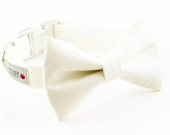 Solid Ivory Bowtie Dog Collar