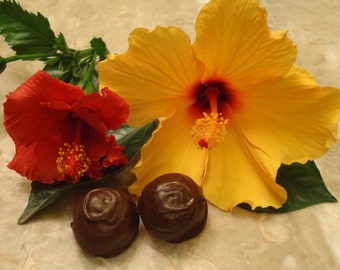 Specialty Truffles, Aphrodisiac Truffles, Gifts for Her, Truffle Collections, Dark Chocolate, Chocolate Truffles, Truffles, Chocolate