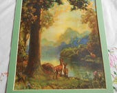 GOOD MORNING DEER Litho Forest Print by Atkinson Fox Doe Fawn Stag Lake Trees Mountains Flowers in Rich Colors, 1910's Art 10 x 12 to Frame