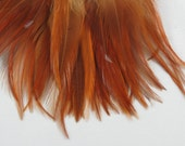50 Red  Feathers saddle feathers  4 to 6 inches Natural feathers year of the rooster