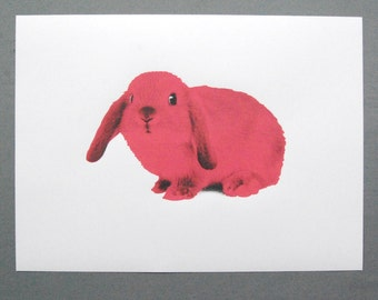 Pink / Yellow Bunny - original limited edition screen print - pet rabbit
