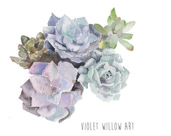 Succulents watercolour fine art giclee print nature flowers wall art wall decor home decor 7 x 5 / 8 x 10 inches