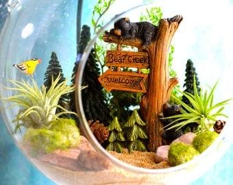 "Bear Woods Terrarium Kit ~ 7"" Air Plant Terrarium Kit ~ 6 Birds to choose from ~ 2 Bears on Tree ~ Sand choice ~ Miniature Garden Kit ~ Gift"