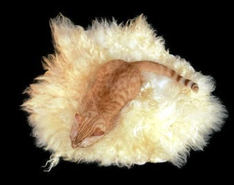 Wool Cat Bed - Cruelty Free Felted Wool Fleece Pet Bed - Leicester Longwool - Supporting US Small Farms - Ready to Ship