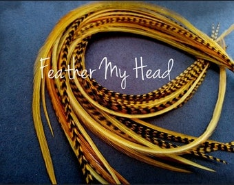 Feather Hair Extension 7-9 inches Long (18-23cm) Thin Fashion Euro - Grizzly Stripe And Solid Mix - 10 Pc Butterscotch