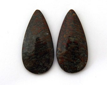 Dinosaur Bone Designer Cab Gemstone Pair 20.6x33.5x5.2 mm 48.0 carats Free Shipping
