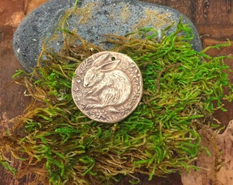 Bronze Bunny Rabbit Sleeping in the Flowers Coin