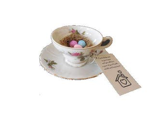 Tea Cup and Saucer Bird Nest, FREE SHIPPING