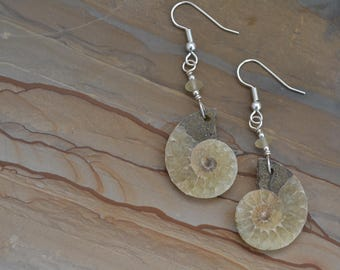 Ammonite Fossil with Ancient Roman Glass Bead and Sterling Silver Earrings