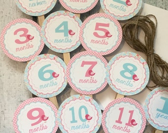 SHABBY CHIC BIRDIE 1st Birthday Photo Clips Banner Newborn - 12 months - Blue Pink - Party Packs Available