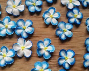Blue-tipped white royal icing flowers  -- Edible handmade cake decorations cupcake toppers (24 pieces)