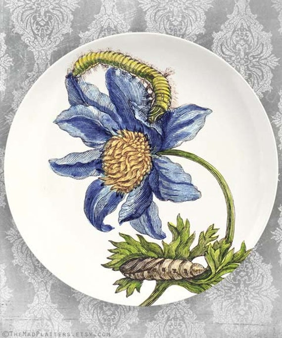 1600's botanical artwork II melamine dinnerware