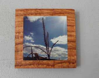 Cornfield Wooden Wall Hanging