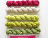 Party of Five yarn by Sweetgeorgia Yarns, Snapdragon colour way of various green, pink, ivory, 3 ply sock yarn merino wool