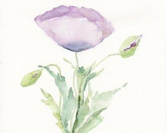 Pale purple poppy, original watercolour, poppy flowers