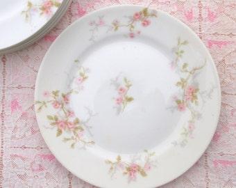 Limoges Plates Set | Pink Roses Plates |  Dessert Plates | Shabby Chic Plates Set - Set of 6 | Theodore Haviland Limoges | 6 inch Plates