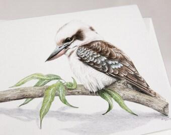 Kookaburra - Australian wildlife art greeting card. Pencil illustration. Laughing Kookaburra. Australian icon. brown white blue feathers