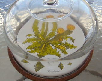 Goodwood Cheese board with Glass Dome Lid
