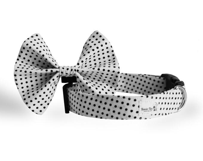 Black & White Collar and Tie