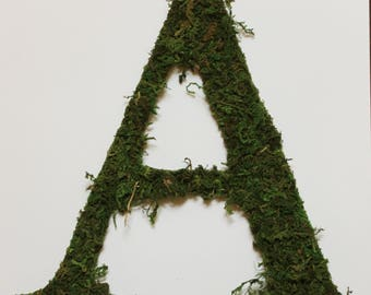 Large Custom Moss Letter | Wall Decoration | Customizable Wedding Letter