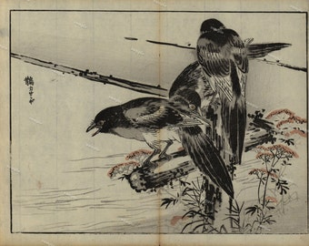 Kono Bairei woodblock print of Crows Japanese Birds 1891 Fold out  Botanical Flowers Meiji Period