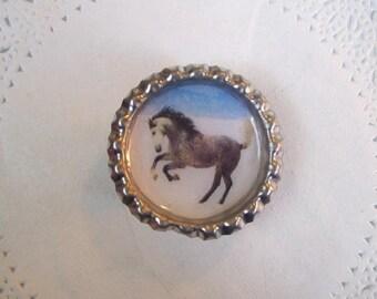 Dapple Gray Horse magnet (743) - Gray Horse magnet - Horse refrigerator magnet