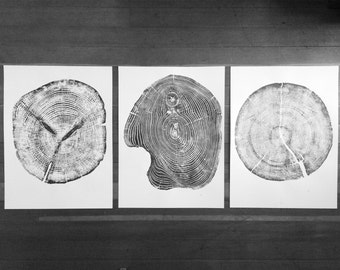 Large Wall Art, Triptych Wall Art, Large Tree Rings, 3 Prints from Pine, Cedar, Mulberry, Gift for him, Fathers day, Geometry, LintonArt