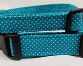 Teal with White Polka Dots - dog collar