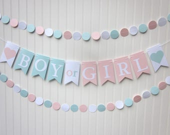 Gender Reveal Banner ,Pink and Blue Paper Banner, Gender Reveal Party,  Shower Garland,Photo Backdrop