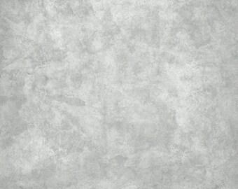 Classic Photography Vinyl Backdrop Light Grey (V8037)