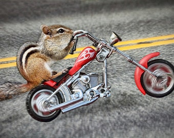 Funny Animal Art, Motorcycle Gifts, Motorcycle Art, Funny Prints, Born to be Wild, Chipmunks, Squirrel Print, Born to Ride, Animal Art