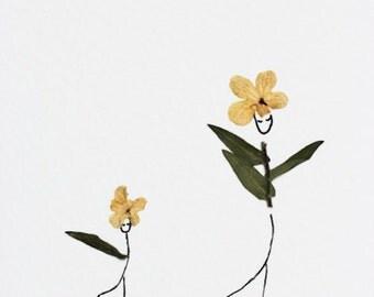 Greeting Card/Petite Art / The Flower Family